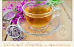 Как выглядит иван чай