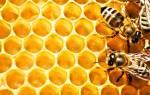 Как делают мед